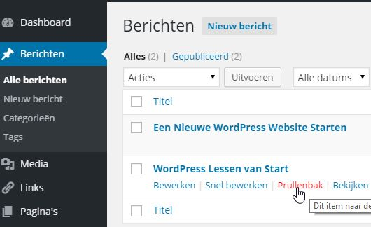 Berichten verwidjeren WordPress Lessen