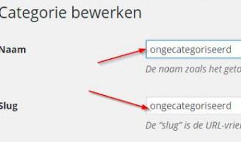 Categorie bewerken WordPress Basis